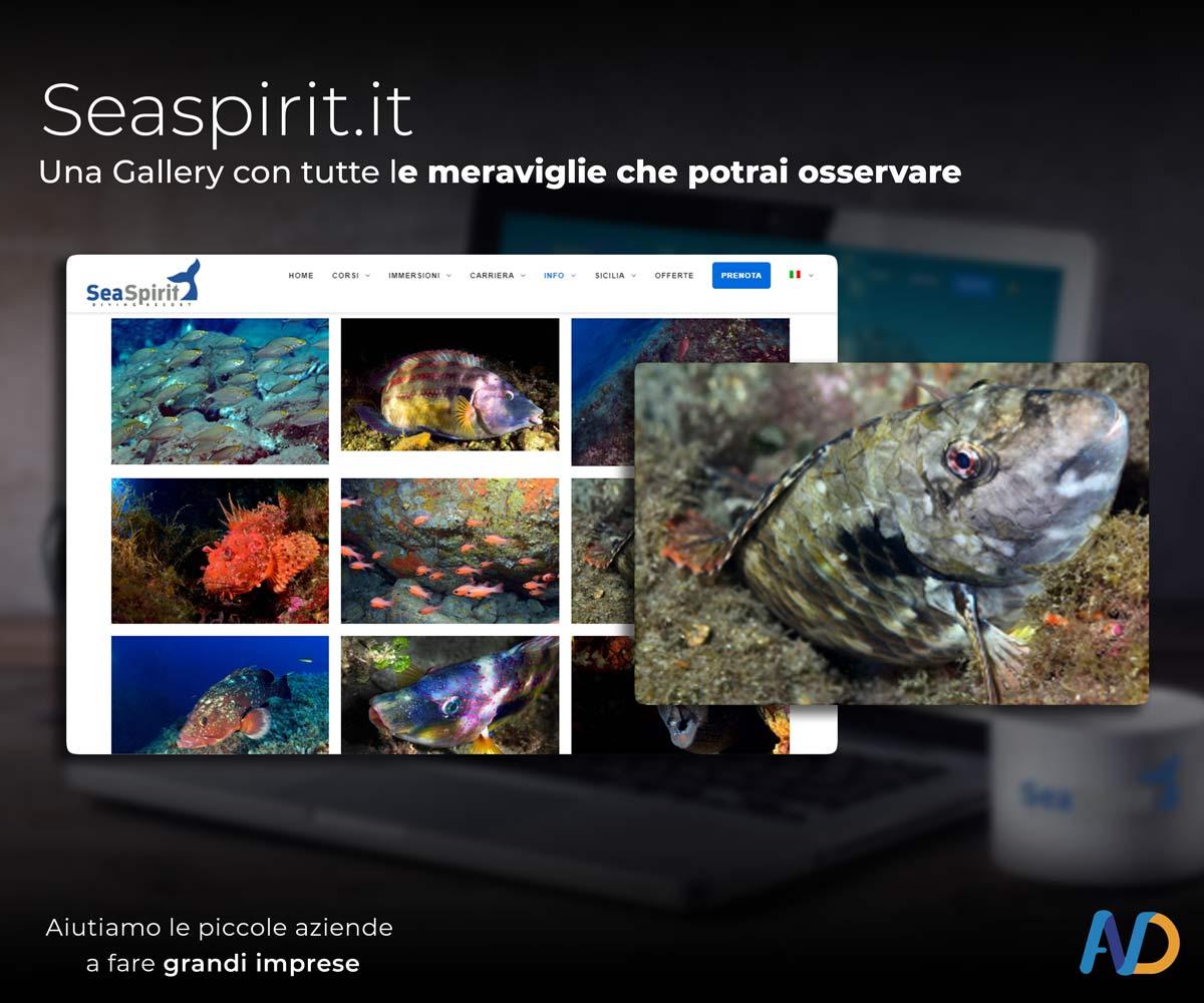 Immagini Presentazione Seaspirit   Gallery 2